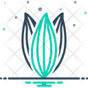Bay Leaf Dried Laurus Nobilis Icon