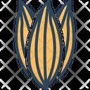 Bay Leaf Leaf Dried Icon