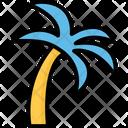 Beach Coconut Tree Date Tree Icon
