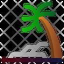 Beach Spring Palm Icon