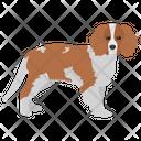 Beagle Dog Breeds Dog Species Icon