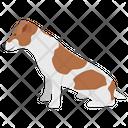 Beagle Icon
