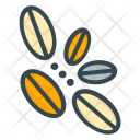 Bean Coffee Seed Icon