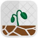 Bean Sprouts Icon