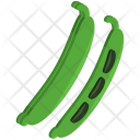 Beans Vegetable Icon