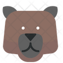 Bear Brown Icon