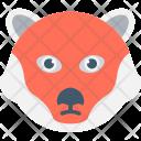 Bear Wild Animal Icon