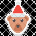 Baby Bear Face Icon
