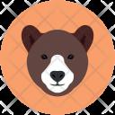 Bear Animal Wild Icon