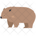 Bear Brown Bear Wildlife Icon