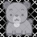 Bear Mammal Zoo Icon