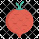 Beat Turnip Vegetable Icon