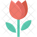 Beauty Flower Spring Icon