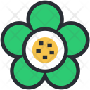 Beauty Blooming Buttercup Icon