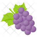 Beautyberry Icon