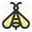 Bee Insect Spring Icon