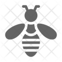 Bee Fly Honey Icon