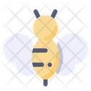 Bee Bug Insect Icon