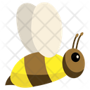 Spring Season Bee Icon