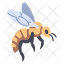 Bee Nature Insect Icon