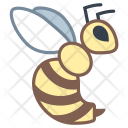 Bee Wasp Animal Icon