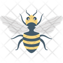 Bee Bug Fly Icon