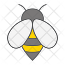 Bee Insect Honey Icon