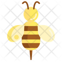 Bee Bug Season Icon