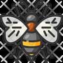 Bee Zoology Entomology Icon
