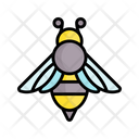 Bee Insect Hornet Icon