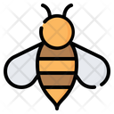 Bee Wasp Insect Icon