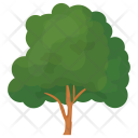 British Forestry Dense Icon