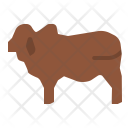 Beef Animal Cow Icon