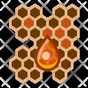 Beehive Drop Honey Icon
