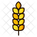 Beer Seeds Cereal Seeds Icon