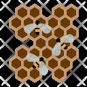 Bees Honey Honeycomb Icon