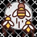 Bees Bee Honey Icon