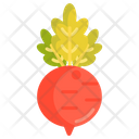 Beet Vegetable Healthy Food Icon