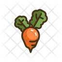 Beet Beetroot Vegetable Icon