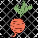 Beet Beetroot Radish Icon