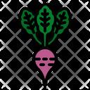 Beet Vegetables Vegan Icon