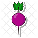 Beet Root Vegetable Icon