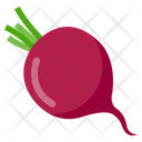 Beet Rout Icon