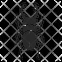 Beetle Bug Hercules Beetle Icon
