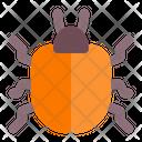 Beetle Animal Animals Icon