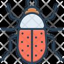 Beetle Bug Fly Icon