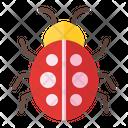 Beetle Bug Insect Icon