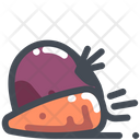 Beetroot Carrot Vegetable Icon