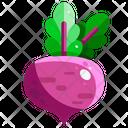 Beetroot Vegetable Organic Icon