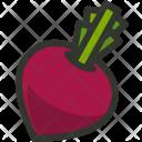 Beetroot Vegetable Radish Icon